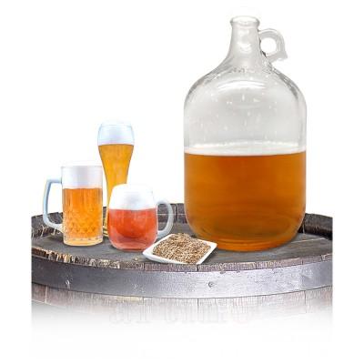 Kit producere bere artizanala
