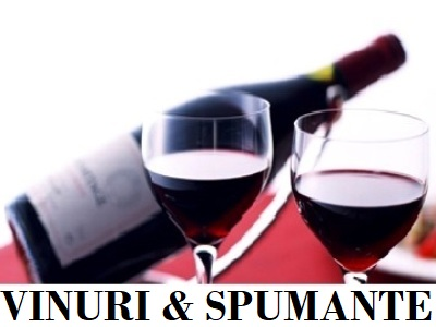 Vinuri si Spumante